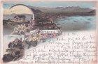 Bregenz, u.a. Hotel Pfänder, Farblitho, Ansichtskarte, ca. 1895